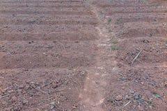 被犁的地面和棕色土壤 免版税库存图片