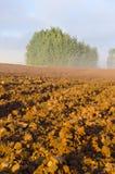 被犁的秋天农田和早晨薄雾 库存图片