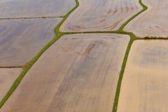 被犁的米领域 图库摄影