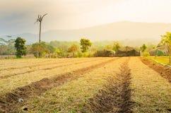 被犁的领域农田耕种 库存照片