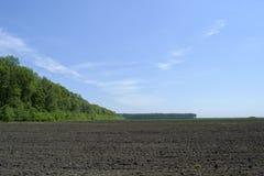 被犁的领域和附近的森林 库存照片