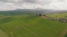 被犁的领域的看法 工艺品树在小山能被看见 意大利,托斯卡纳 股票视频