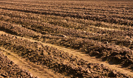 被犁的领域-国家农厂风景 库存图片