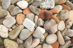被环绕的石头 免版税图库摄影