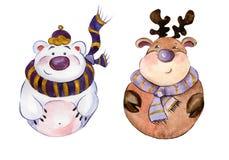 被环绕的滑稽的穿紫色围巾的北极熊和北美驯鹿 库存图片
