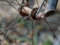 被用完的被放弃的肮脏高明构造MTB自行车车轮的表面 免版税图库摄影
