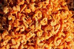 被盐溶的干大虾 免版税库存图片