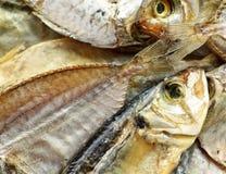 被盐溶的干燥鱼 库存图片