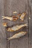 被盐溶的干鱼 免版税库存照片