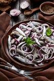 被盐溶的西鲱用了卤汁泡与在一块陶器板材的红洋葱圆环用橄榄、芫荽子在碗和黑麦切的面包 免版税库存照片