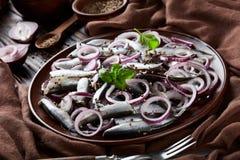 被盐溶的西鲱用了卤汁泡与在陶器板材芫荽子、棕色布料、叉子和刀子的红洋葱圆环在老 库存照片