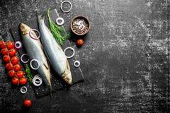 被盐溶的鲱鱼用蕃茄、葱和草本 库存照片