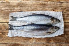 被盐溶的鲱鱼 免版税图库摄影
