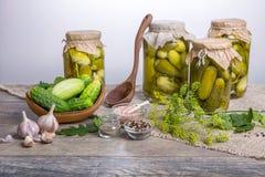 被盐溶的黄瓜 香料和草本做的腌汁在木背景 免版税库存图片