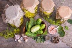 被盐溶的黄瓜 香料和草本做的腌汁在木背景 库存图片