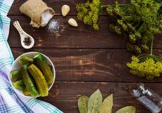 被盐溶的黄瓜 香料和草本做的腌汁 库存图片