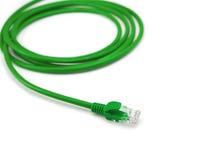 被盘绕的电缆轻地查出lan白色 免版税库存图片