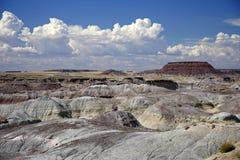 被石化的森林国家公园 图库摄影