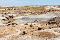 被石化的森林横向国家公园 免版税图库摄影