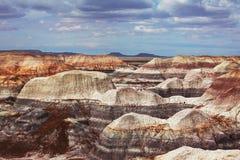 被石化的森林 免版税库存图片