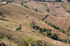被砍伐山林的看法 图库摄影