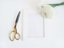 被称呼的储蓄照片 与束的女性产品大模型毛茛、毛茛属和黄水仙开花,空白白色框架 库存图片
