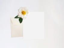 被称呼的储蓄照片 与牡丹花的女性数字式产品大模型,纸空白的名单,信封和白色 库存图片