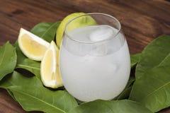 被紧压的柠檬汁饮料 免版税库存图片