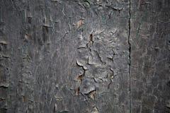 被绘的一部分的老紫色门木头 免版税库存图片