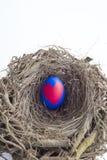 被绘的复活节彩蛋细节与在巢安置的红色心脏的我 库存图片