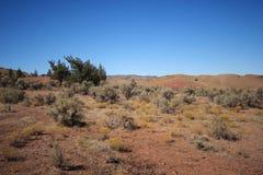 被绘的沙漠小山 图库摄影
