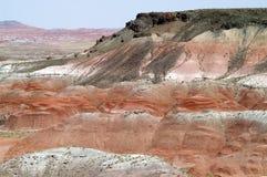 被绘的沙漠 图库摄影