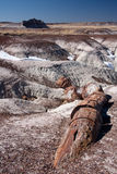 被绘的沙漠 免版税库存图片