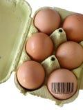 被编码的鸡蛋 图库摄影