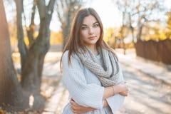 被编织的毛线衣的俏丽的妇女在秋天公园背景  免版税库存照片