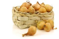 被编织的篮子新鲜的葱珍珠 图库摄影
