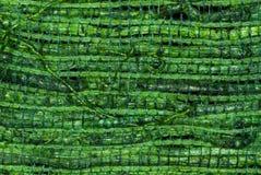 被编织的绿色秸杆 库存图片