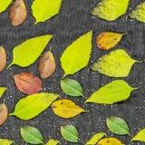 被编织的羊毛褐色毛线衣背景 堆被编织的秋天在木背景,毛线衣,针织品穿衣, 免版税图库摄影