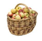 被编织的苹果篮子 免版税库存照片