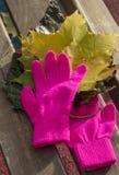 被编织的桃红色手套和黄色槭树 免版税库存图片
