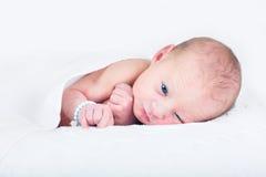 被编织的白色毯子的一个天的新出生的婴孩 库存照片