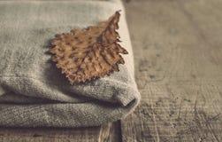 被编织的羊毛羊毛衫和橡木叶子 库存照片