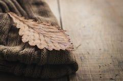 被编织的羊毛围巾和干燥叶子 免版税图库摄影