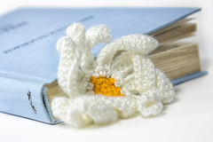 被编织的花和书 库存图片