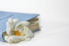 被编织的花和书 图库摄影