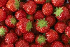 被编组的草莓 图库摄影