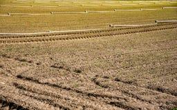 被耕的土壤在早期的春天 免版税库存照片