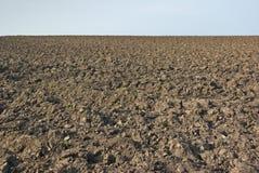 被耕的域 免版税库存照片