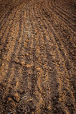 被耕的领域,土壤接近的,农业背景 免版税库存照片