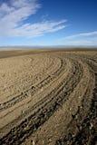 被耕种的土壤 免版税图库摄影